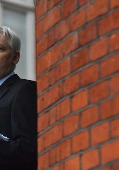 Thụy Điển ngừng điều tra đối với nhà sáng lập Wikileaks
