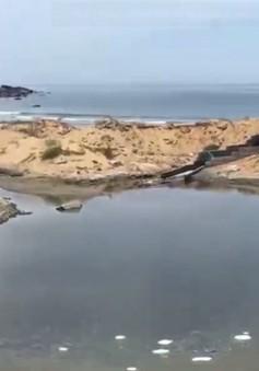 Nuôi tôm gây ô nhiễm ngay trên đất quốc phòng tại Thừa Thiên-Huế