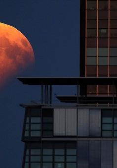 Ngỡ ngàng trước vẻ đẹp của trăng máu trên thế giới