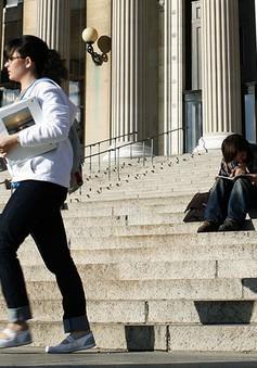 Mỹ: Sinh viên quốc tế lo lắng sau cải tổ chương trình visa H-1B
