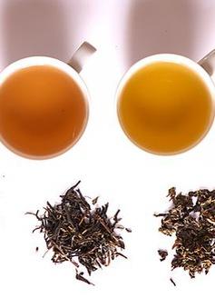 Bạn đã hiểu hết công dụng của từng loại trà với sức khỏe?
