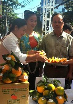Đẩy mạnh hợp tác tiêu thụ nông sản an toàn giữa tỉnh Hòa Bình và Hà Nội