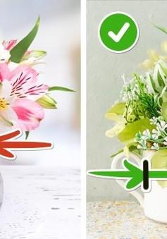 10 mẹo hay giữ hoa tươi lâu chị em nên biết