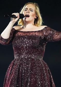 Adele sẽ ngừng đi lưu diễn?