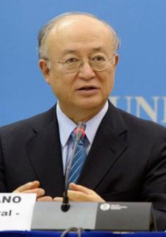 IAEA lo ngại về chương trình hạt nhân của Triều Tiên