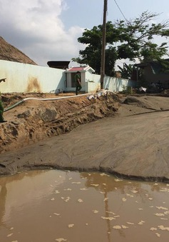 Yêu cầu ngừng khai thác cát sông ở khu vực giáp ranh Bình Phước - Đồng Nai