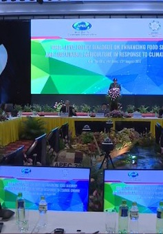Tăng cường hợp tác đảm bảo an ninh lương thực