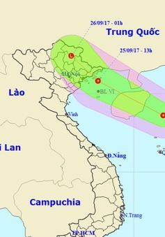 Các tỉnh, thành từ Quảng Ninh đến Quảng Ngãi ứng phó với áp thấp nhiệt đới