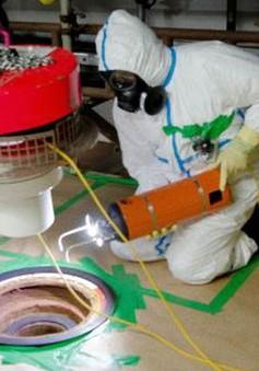 Robot dọn rác thải hạt nhân Avexis lần đầu được đưa vào hoạt động