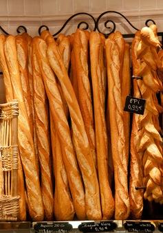 Ai sẽ là người cung cấp bánh mì cho Tổng thống mới của Pháp?