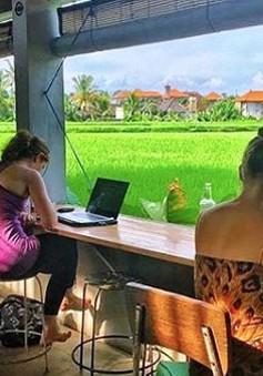 Đảo Bali - Điểm đến lý tưởng của du mục kỹ thuật số