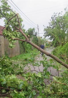 Nghệ An thiệt hại nặng nề do bão số 2