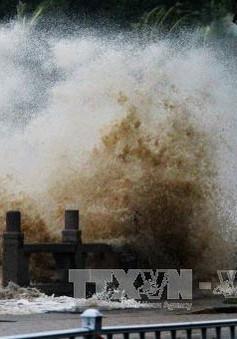 Trung Quốc ban bố cảnh báo vàng do bão Pakhar