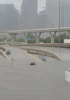 Siêu bão Harvey gây thiệt hại kinh tế nghiêm trọng ở bang Texas, Mỹ