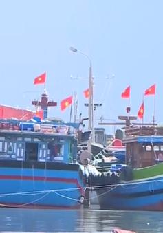 Tiếp tục hỗ trợ bảo hiểm cho ngư dân miền Trung