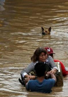 Bão Tembin đổ bộ vào Philippines