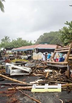 Bão Maria gây thiệt hại nặng nề cho vùng Caribbean