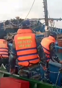 Bắt hơn 300.000 lít dầu không rõ nguồn gốc tại Cà Mau