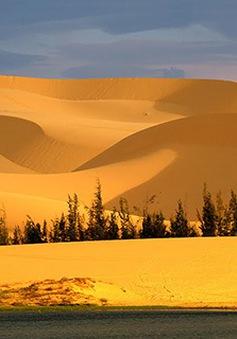 Khám phá vẻ đẹp Bàu Trắng - Tiểu sa mạc ở tỉnh Bình Thuận