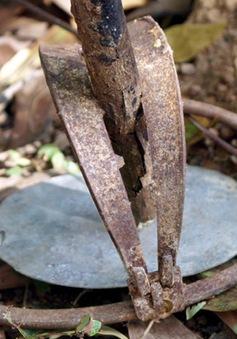 Gia tăng nạn săn bắt động vật hoang dã trong Khu Bảo tồn Sao La