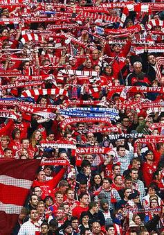 Không phải Old Trafford, sân bóng nào hút CĐV nhất châu Âu?