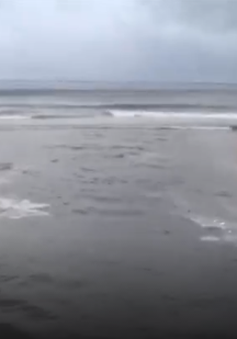Đà Nẵng: Nước thải hôi thối tấn công các bãi biển