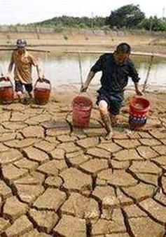 Biến đổi khí hậu gây ảnh hưởng đến an ninh lương thực ở nước ta