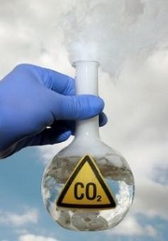 Dùng ánh nắng biến CO2 thành ethanol
