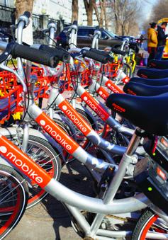Thành phố Vũ Hán (Trung Quốc) cấm tiếp nhận thêm xe đạp chia sẻ
