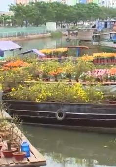 Không khí đón Xuân trên bến dưới thuyền ở bến Bình Đông