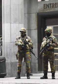 EU cam kết chi 118,5 triệu Euro để chống khủng bố