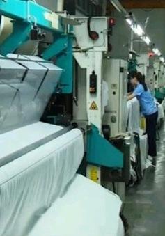Doanh nghiệp sản xuất sợi trước nguy cơ phá sản
