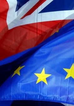 Thượng viện Anh yêu cầu sửa Dự luật Brexit