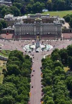 Tấn công bằng dao bên ngoài điện Buckingham, Anh
