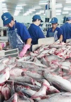 Khai mạc Hội chợ cá tra và thủy sản Việt Nam