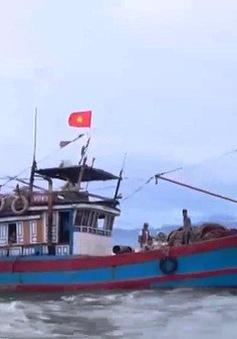 Hệ thống Đài thông tin duyên hải bao phủ toàn bộ vùng biển Việt Nam