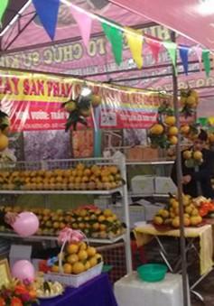 Khai mạc Lễ hội cam và các sản phẩm nông nghiệp Hà Tĩnh