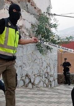 Tây Ban Nha và Maroc triệt phá nhóm cực đoan