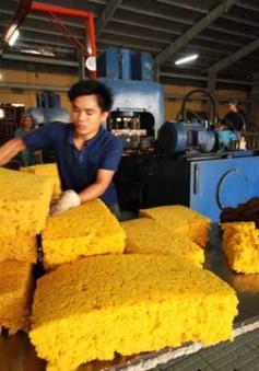 Hơn 50% cao su xuất khẩu của Việt Nam xuất sang Trung Quốc trong tháng 5