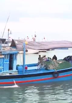 Thay đổi nhận thức ngư dân để tránh khai thác bất hợp pháp
