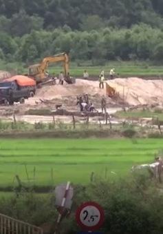 Gia Lai bắt quả tang vụ khai thác trái phép gần 900m3 cát