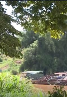 Sau lệnh cấm, nạn khai thác cát trên sông Đồng Nai vẫn diễn ra