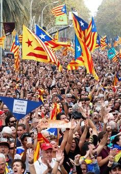 Catalonia tuyên bố độc lập, Tây Ban Nha phản ứng mạnh mẽ