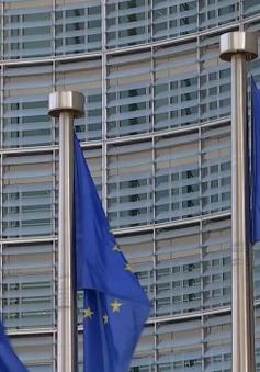 EU cần một Chính phủ Đức mạnh mẽ