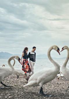 Không quá cầu kỳ, những cặp đôi này vẫn gây ấn tượng với ảnh cưới đẹp như mơ