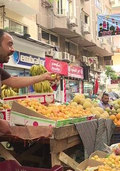 Chợ nông sản Ai Cập trong những ngày khủng hoảng