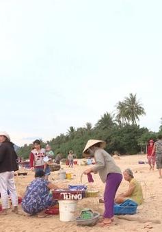 Trải nghiệm nhịp sống làng biển với chợ cá lúc bình minh