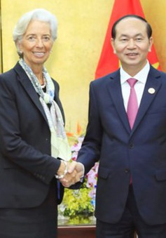 IMF cam kết tiếp tục hợp tác hỗ trợ Việt Nam giữ vững ổn định kinh tế vĩ mô