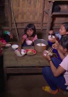 Cô đỡ thôn bản – Chỗ dựa của bản làng