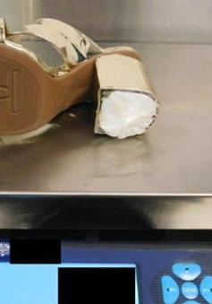 Australia triệt phá âm mưu vận chuyển ma túy trong gót giày